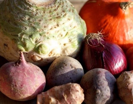 Liste d 39 aliment d 39 un crudivore tout ce dont on a besoin pour tre au top - Legumes d hiver liste ...